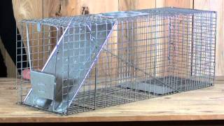 Large Galvanized Animal Cage Trap