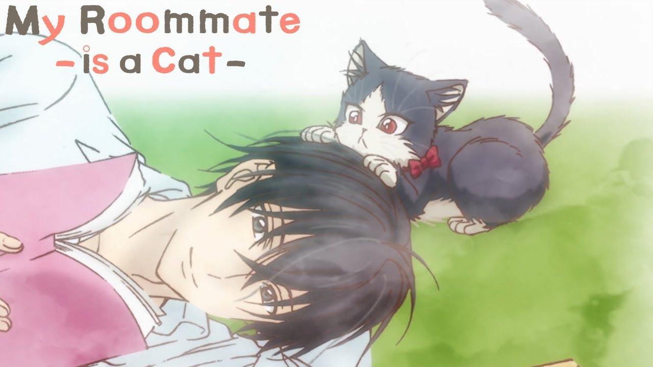Cute Wallpaper For My Room My Roommate Is A Cat Ending Kimi No Tonari Watashi No