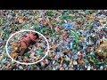 Menya ibitangaza bya PLASTIC by ISMAEL Mwanafunzi: Sobanukirwa plastic