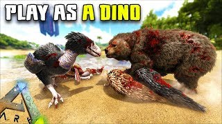 MAKING A DIREBEAR PACK   PLAY AS A DINO   ARK SURVIVAL EVOLVED