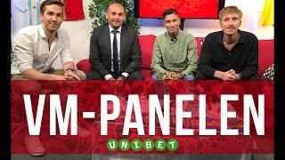VM-Panelen 2018