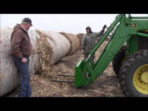 2011 Grain Sorghum/Milo Bales