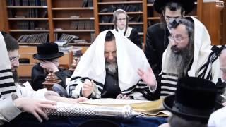 Purim 5777 With Rachmastrivka Rebbe