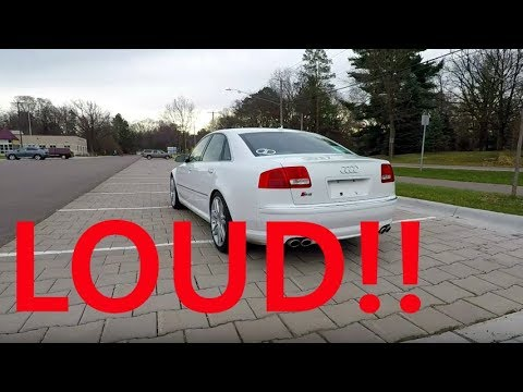 My Audi S8 Sounds Like a LAMBORGHINI!!!