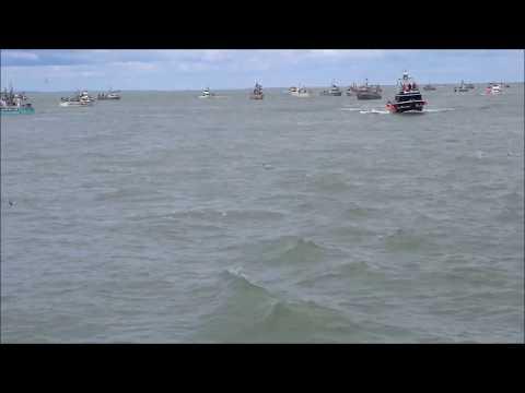 Large Push Of Sockeye In Bristol Bay