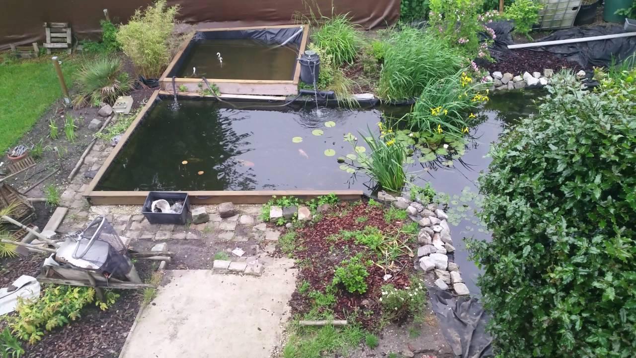 mon bassin aquatique avec cascade carpe koi japonnaise - youtube