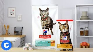 Hill's Science Diet Special Needs Cat Food | Chewy
