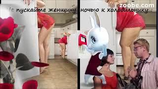 ЗАЙКА Julia Zoobe ' Женщина и холодильник'