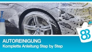 Professionelle Autoreinigung - Komplette Anleitung Step by Step