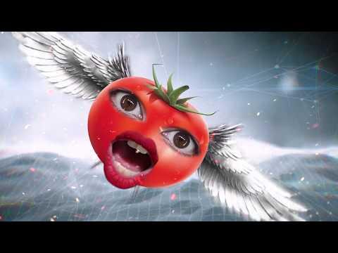 פירורים על עגבנייה - שיר התגובות שלכם 2018