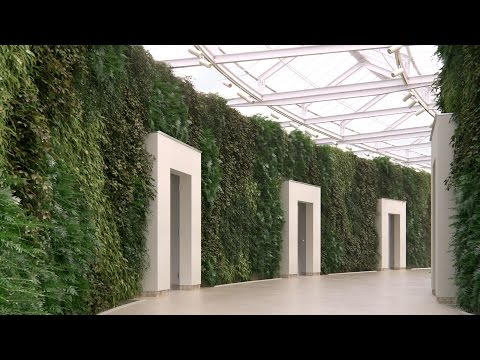 TUTORIAL: Scattering On Vertical Surfaces With Forest Pack (intermediate)