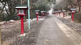 あられが降った早朝の高尾山一号路 18/02/22 thumbnail