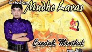 Download Mp3 Cokek-mudho Laras-langgam-campursari Koplo-cunduk Menthul