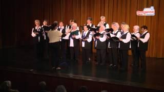 Dalos-táncos nyugdíjas találkozó