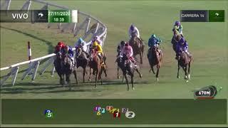 Vidéo de la course PMU PREMIO KALMER