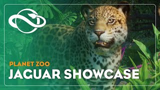 Planet Zoo | Jaguar Showcase