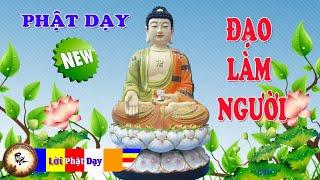 Những Lời Phật Dạy Đạo Làm Người ( Mới ) cực hay Nên nghe 1 lần - Ở Đời Phải Biết Những Điều Này