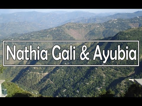 Natural Beauty of Nathia Gali & Ayubia in Pakistan (Galyat)