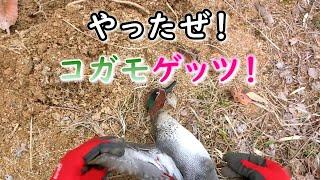【狩猟Season3】鴨猟☆ゲッツ☆(解体は次回)