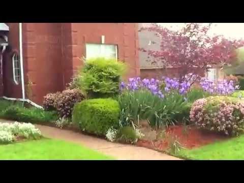 видео: Ландшафтный дизайн своими руками - видео цветника