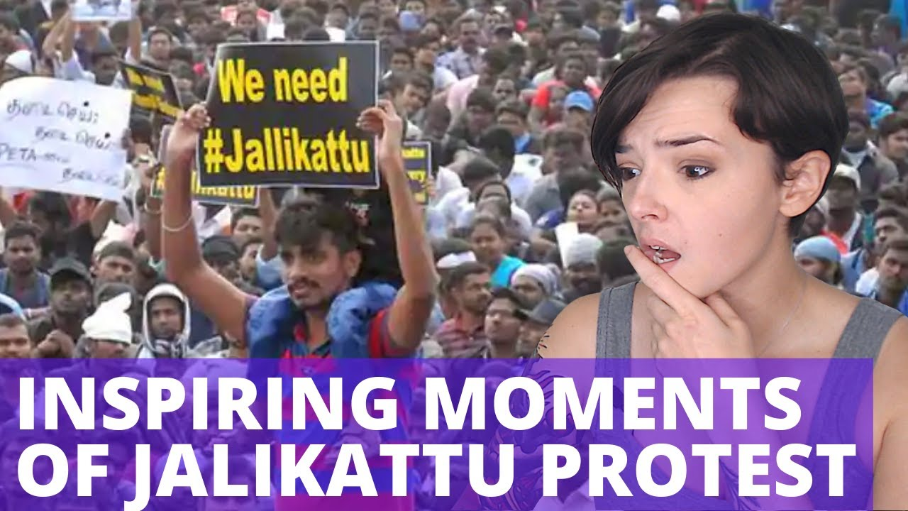 Top 10 - Inspiring Moments of Jalikattu Protest | REACTION!