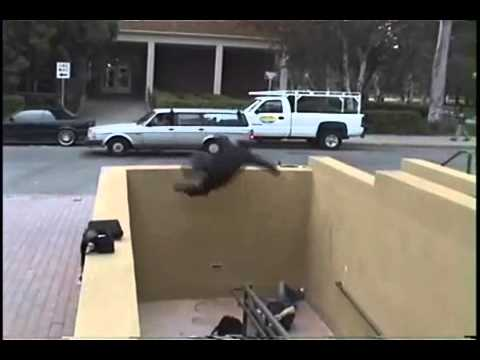 The David Belle Fall  parkour