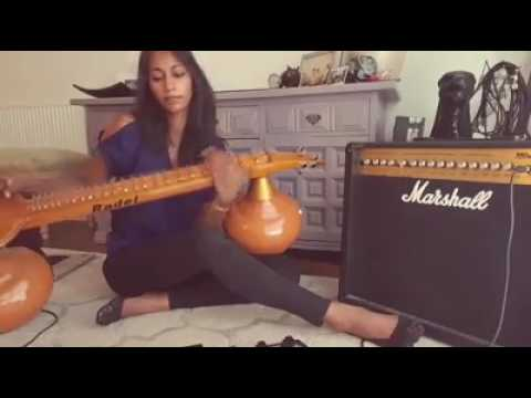 Electric Veena