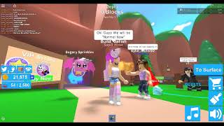 Bad Puns In Roblox 2