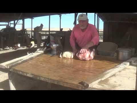 Monster Homegrown Chicken - vs - Commercially Grown