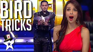 Magician Conjures BIRDS To The Stage on India's Got Talent | Magicians Got Talent