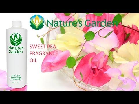 sweet-pea-fragrance-oil--natures-garden