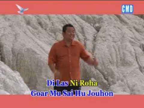 Arvindo Simatupang Rohani Batak vol.2 - HU PUJI GOARMI [Official Music Video]