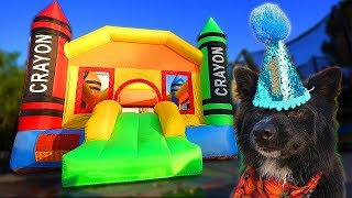 Bounce house surprise party for 1yr old puppy!