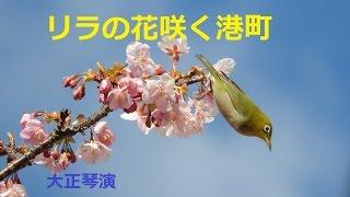 「リラの花咲く港町」/藤原浩 Japanese Taishogoto 大正琴 /Gerobikki