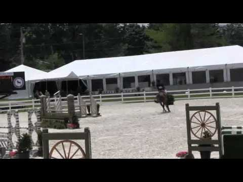 Video of NORTON ridden by ABIGAIL JOHNSTON from ShowNet!