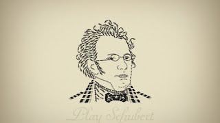 Schubert - Ave Maria - Flute and Piano duet