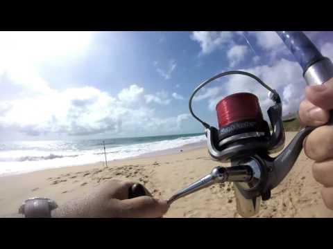 Pesca de Pampo na Via costeira