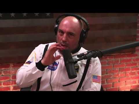 Joe Rogan on the Logan Paul Controversy