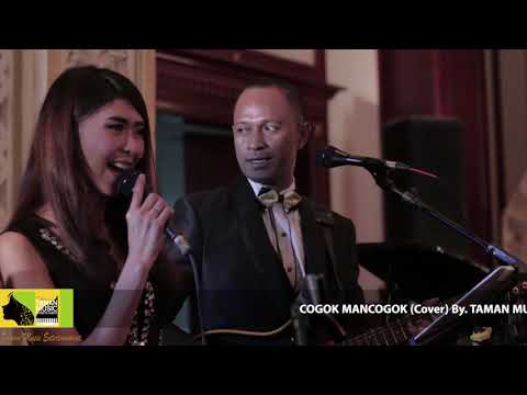 COGOK MANCOGOK - Elly Kasim ( Cover ) By Taman Music Entertainment At Dhanapala