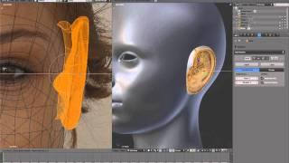 Blenderella - 02 Head - 13 Ear