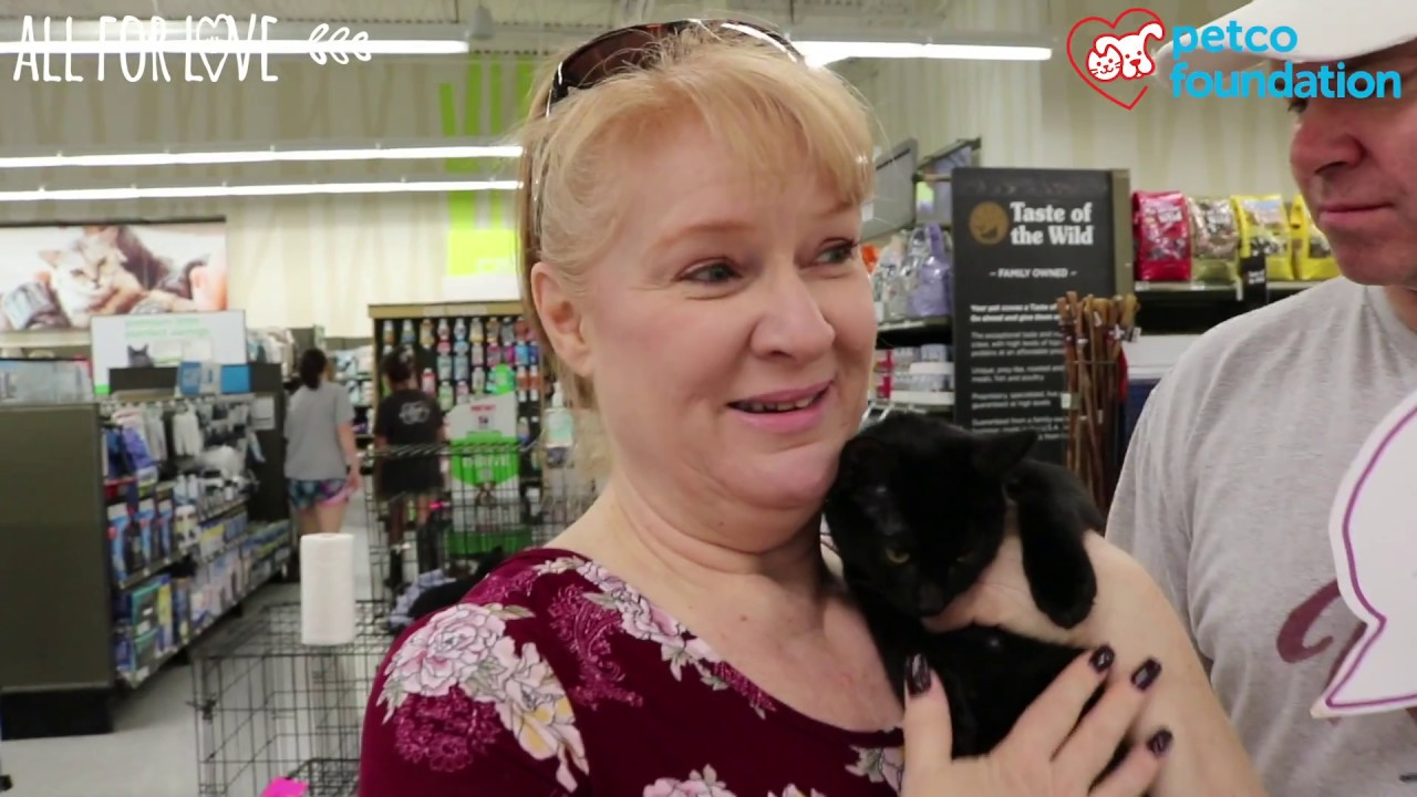 Ebony was adopted at a Petco store
