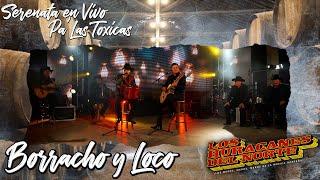 Los Huracanes Del Norte - Borracho y Loco [Serenata En Vivo Pa' Las Toxicas]
