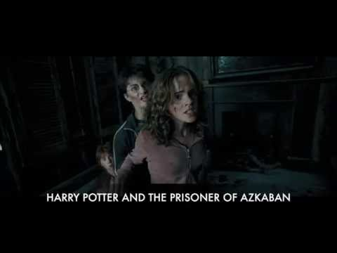 Sirius Black is an Animagus | Harry Potter and the Prisoner of Azkaban