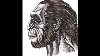 Ape Style Neanderthal - A Dredfunn Reconstruction - Time Lapse Art