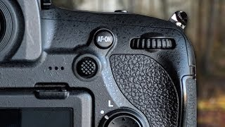 Camera Settings Wildlife Photography - Don't use Aperture Priority!