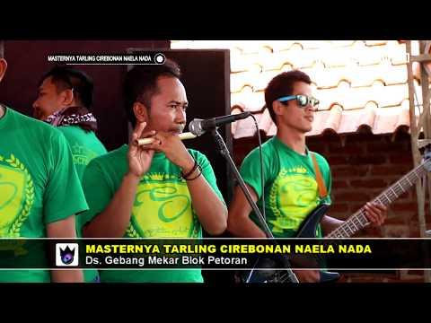 Ceplik Sewu -  Arsinta Dewi - Naela Nada Live Gebang Udik Cirebon 30 April