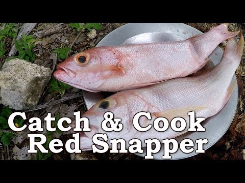 HAND-LINE FISHING RED SNAPPER! | Cooking Over Open Fire In The Dominican Republic | ASMR (Silent)
