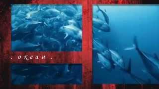 "Pino Donaggio - саундтрек к сериалу ""Океан"" Руджеро Деодато"