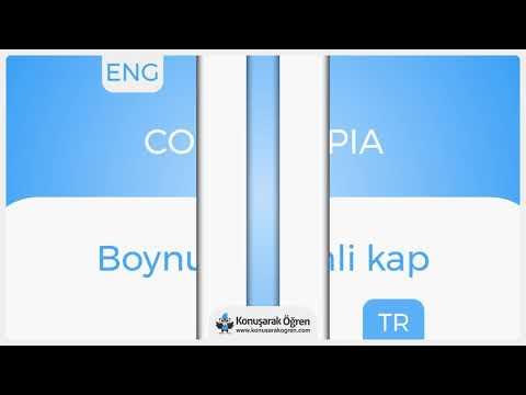 Cornucopia Nedir? Cornucopia İngilizce Türkçe Anlamı Ne Demek? Telaffuzu Nasıl Okunur? Çeviri Sözlük