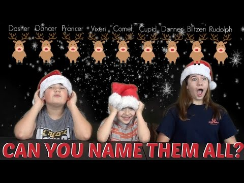 CAN YOU NAME ALL SANTA'S REINDEER? #VLOGMAS DAY 14
